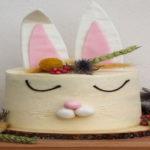 magie avec lapin et gâteau